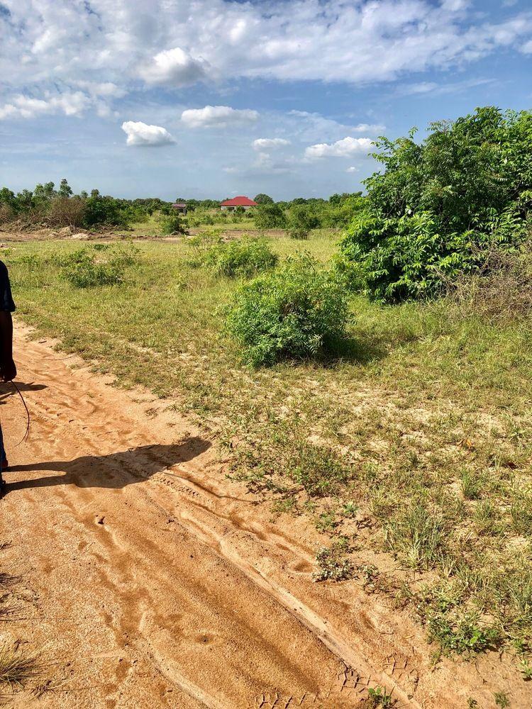 ESTATE LANDS BEHIND THE TEACHERS HOUSING PROJECT, AFIENYA-DODOWA ROAD.