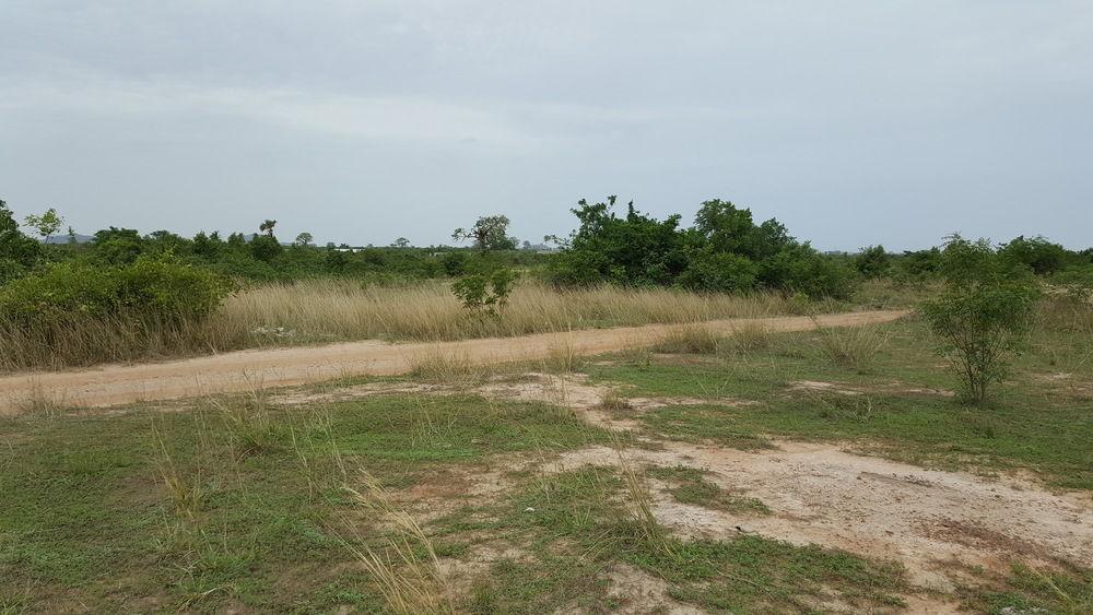 @ AFIENYA ELEGANT LANDS FOR SALE